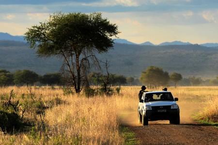 Park wardens drive through Mikumi National Park.