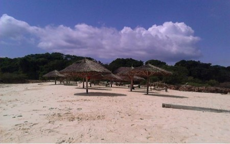 Bongoyo beach after the cleanup. Photo contributed: Nipe Fagio